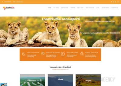 Sito web per tour operator in Africa: Afronine Tour